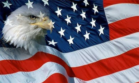 graphic of a bald eagle and an American flag