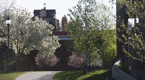 springtime view of McMullen Hall on the MSUB university campus